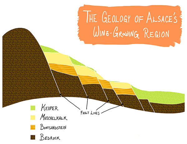 Alsace The World S Most Diverse Wine Region Tasting Notes